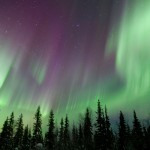 aurora-borealis-over-forest-19521145-fb-share1